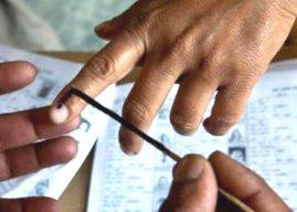 Hamirpur Lok Sabha Election Party Wise Result In Himachal Pradesh
